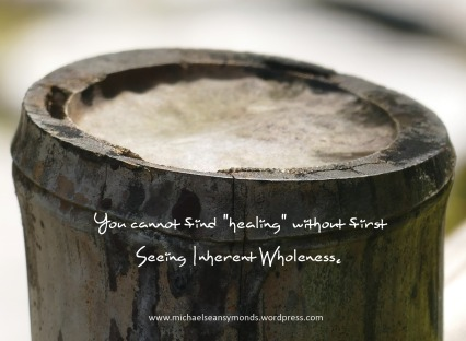 Seeing Wholeness. michael sean symonds