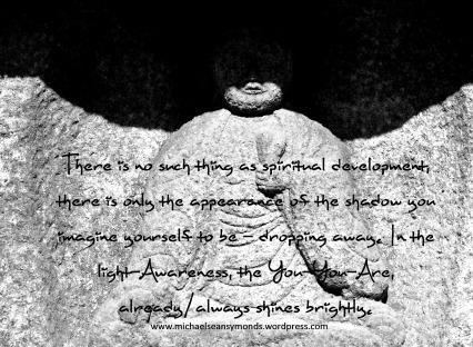 The Shadow You. michael sean symonds
