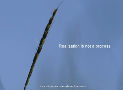 Realization2.michael sean symonds