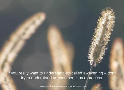 Awakening. michael sean symonds