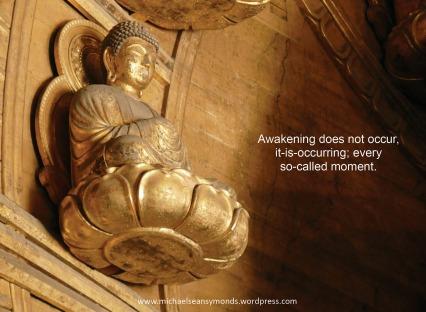 Awakening Does Not Occur. michael sean symonds