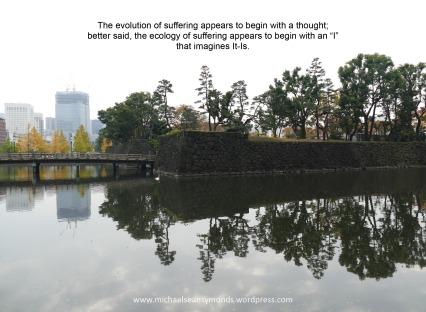 The Evolution Of Suffering. michael sean symonds