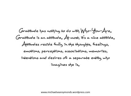 Gratitude Has Nothing To Do With-Who-You Are. michael sean symonds