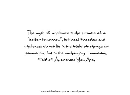 The Myth Of Wholeness. michael sean symonds