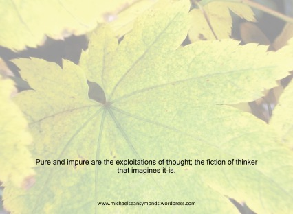 Exploitations Of Thought. michael sean symonds