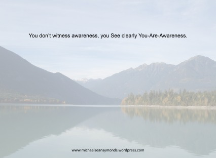 You-Are-Awareness. michael sean symonds