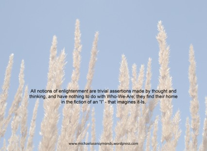 All Notions Of Enlightenment. michael sean symonds