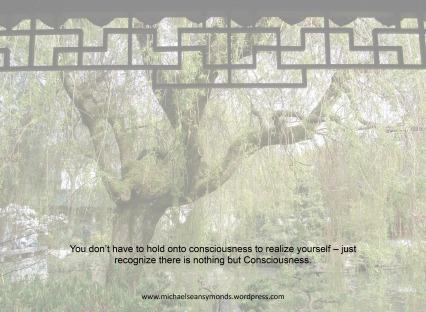 Realizing Self. michael sean symonds