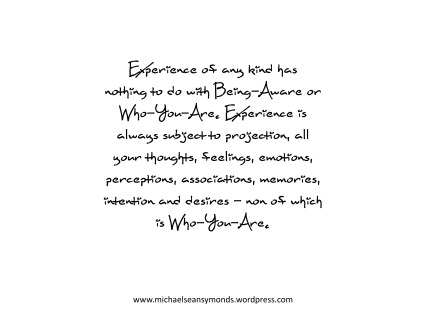 Experience Is Always Subject To Expression. michael sean symonds