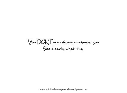 You Don't Transform Darkness. michael sean symonds