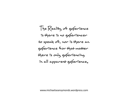 The Reality Of Experience. michael sean symonds