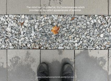 The Mind Has No Potential. michael sean symonds